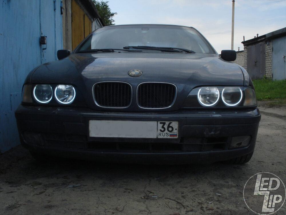 Установка ангельских глазок BMW 520 E39